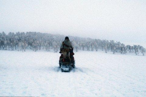 LapplandSami.02.jpg
